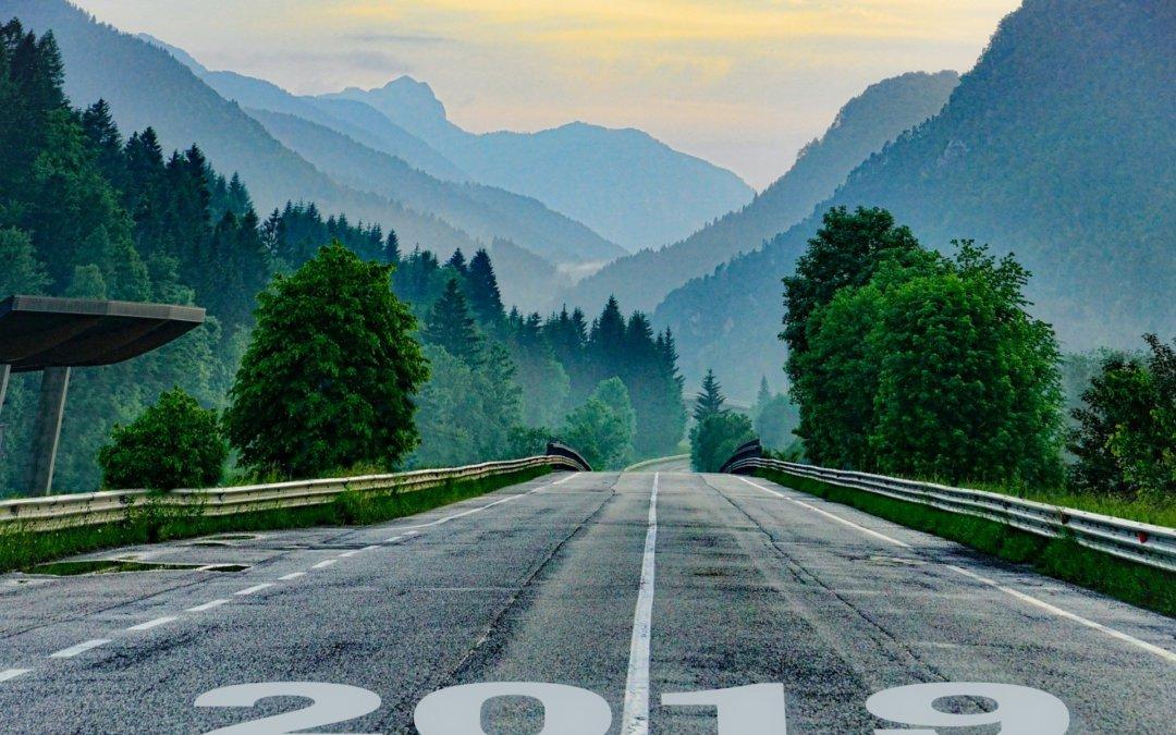 HLS-Jahresbericht 2019